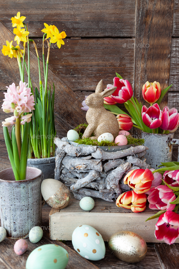 Colorful spring flowers - Stock Photo - Images