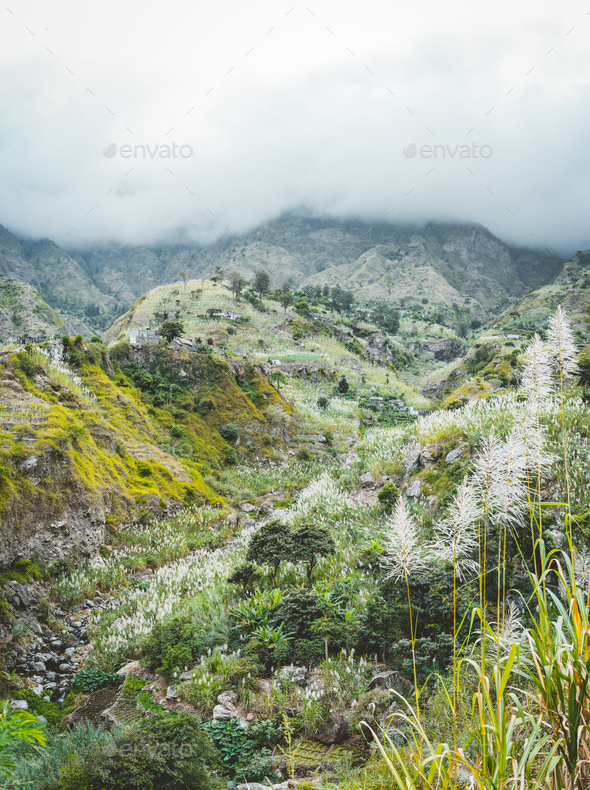 Landscape of vegetation and mountains and some local dwellings of the Paul Valley. Cultivated - Stock Photo - Images