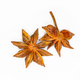 star anise isolated on white - PhotoDune Item for Sale