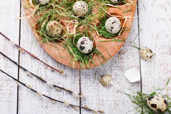 Quail egg .Easter holiday. - Stock Photo - Images
