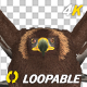 Golden Eagle - 4K Flying Loop - Front View - VideoHive Item for Sale