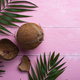 Coconuts and palm leaves on pink - PhotoDune Item for Sale
