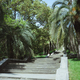 landscape with trees and stairs in arboretum sochi - PhotoDune Item for Sale