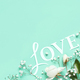 Flowers and LOVE lettering on a light green background - PhotoDune Item for Sale