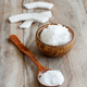 Coconut oil in a bowl with a spoon - PhotoDune Item for Sale