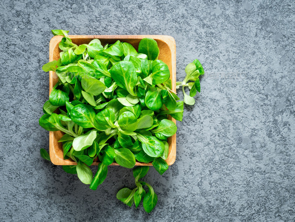 Wooden bowl with corn salad leaves, lamb's lettuce on gray stone background, top view. - Stock Photo - Images