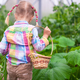 Little cute girl with the harvest in a greenhouse - PhotoDune Item for Sale