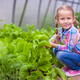 Adorable little girl harvesting in the greenhouse - PhotoDune Item for Sale