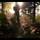 Forest trail run - VideoHive Item for Sale