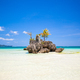 Perfect tropical beach with turquoise water and white sand beaches in Phillipines - PhotoDune Item for Sale