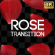 Rose Reveal - VideoHive Item for Sale