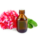 Oil with pink geraniums in dark bottle - PhotoDune Item for Sale