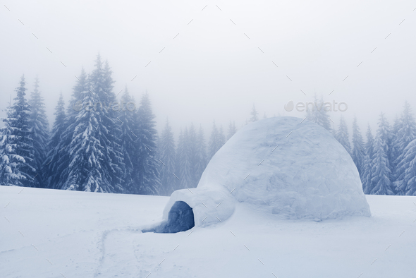 Real snow igloo house in the winter mountains - Stock Photo - Images