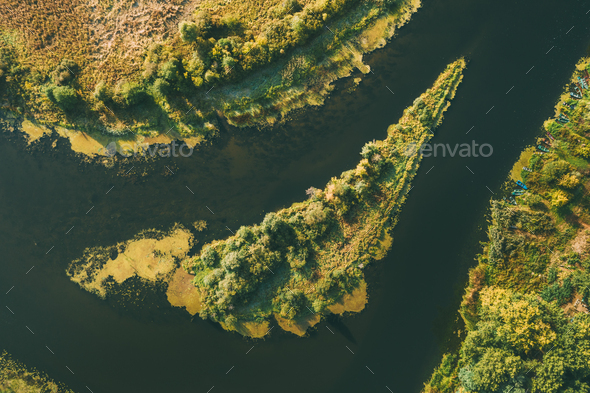Aerial View Green Forest Woods On Small River Island In Summer Landscape. - Stock Photo - Images