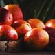 bloody oranges - PhotoDune Item for Sale