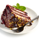 piece of chocolate and blackcurrant cake - PhotoDune Item for Sale