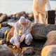 Scientist collecting water sample at the seashore - PhotoDune Item for Sale