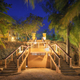 Lighted stairs in beautiful tropical forest at summer night - PhotoDune Item for Sale