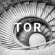 TOR - Architecture Agency Muse Template