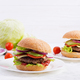 Big sandwich - hamburger burger with beef, avocado, tomato and red onions - PhotoDune Item for Sale