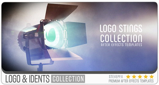 Logo Sting and Idents