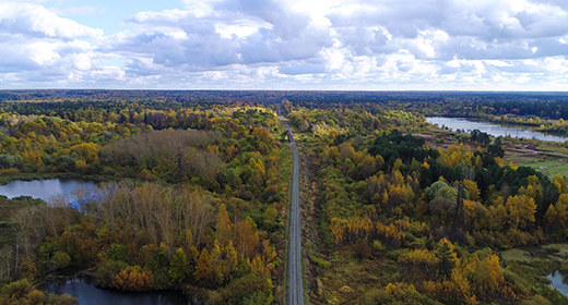 Railway in the Autumn Forest Drone Collection