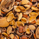 Empty shells of walnuts hazelnuts almonds - PhotoDune Item for Sale