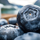Blueberry antioxidants on a wooden table on a background of Norwegian nature. - PhotoDune Item for Sale