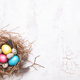 Colorful Easter Eggs in Nest on White Background. - PhotoDune Item for Sale