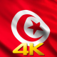 Tunisia Flags - VideoHive Item for Sale
