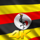 Uganda Flags - VideoHive Item for Sale
