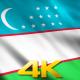 Uzbekistan Flags - VideoHive Item for Sale
