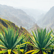 Santo Antao island at Cabo Verde. Volcano terrain with mountain edges above the valley overgrown - PhotoDune Item for Sale