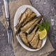 Canned smoked sprats in oil - PhotoDune Item for Sale