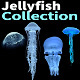 Jellyfish Collection - VideoHive Item for Sale