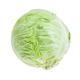 fresh white cabbage isolated on white - PhotoDune Item for Sale