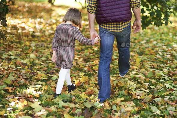 Rear view of child and father walking in autumn woods - Stock Photo - Images