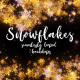 Snowflakes 02 - VideoHive Item for Sale
