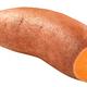 Sweet potato i. batatas, paths - PhotoDune Item for Sale