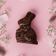 Chocolate Easter Bunny, feathers and flowers on pastel pink background - PhotoDune Item for Sale