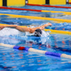 butterfly stroke competition - PhotoDune Item for Sale