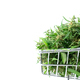 fresh marijuana flower in shopping cart isolated on white background - PhotoDune Item for Sale