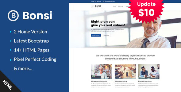 Bonsi - Business Consulting and Professional Services HTML Template