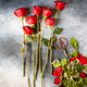 Red Bouquet of fresh roses .Traditional gift holiday - PhotoDune Item for Sale