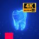 Dental Care 4K Intro