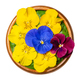 Fresh edible flowers, horned pansy over field salad leaves in wooden bowl - PhotoDune Item for Sale