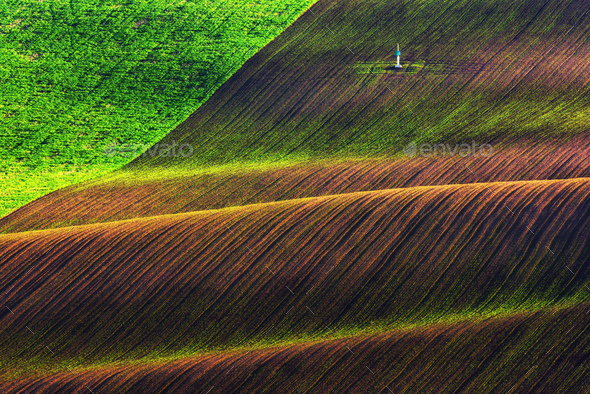 Green and brown waves of the agricultural fields - Stock Photo - Images