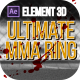 Ultimate MMA Ring - VideoHive Item for Sale