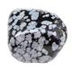 polished Snowflake Obsidian gemstone isolated - PhotoDune Item for Sale
