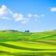 Apulia countryside view rolling hills landscape. Poggiorsini, Murge Italy - PhotoDune Item for Sale